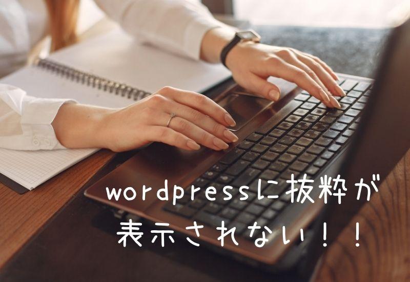 wordpress-excerpt-not-displayed